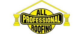 All Professional Remodeling Group